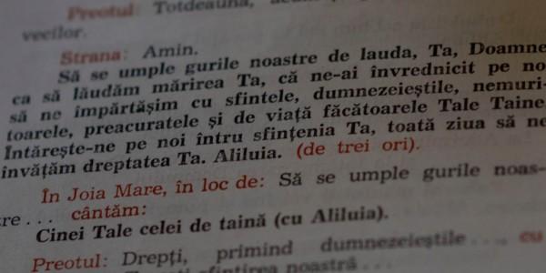 duminica-gusterita 018